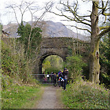 SD3097 : Bridge over dismantled railway, Coniston by Ian Taylor