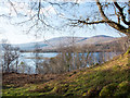 NN1588 : Rough vegetation above southern shore of Loch Arkaig by Trevor Littlewood