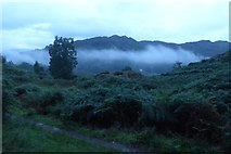 NY3404 : Low cloud over Loughrigg Tarn by DS Pugh