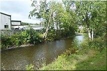 NY2623 : Along the River Greta by DS Pugh
