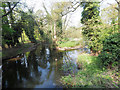 TL8094 : Westerly view from bridge over river Wissey by David Pashley