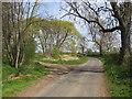 NZ3629 : Butterwick Road, near Sedgefield by Malc McDonald