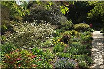 SX9050 : Seemly Terrace, Coleton Fishacre by Derek Harper