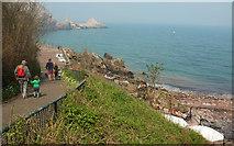 SX9364 : Anstey's Cove by Derek Harper