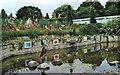 NZ2740 : Botanic Garden Pool by Gordon Griffiths