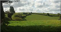 SX8281 : Valley above Great Rock Farm by Derek Harper
