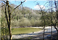 TA0126 : Pond in an Old Quarry by Des Blenkinsopp