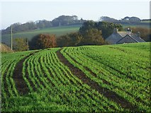 SX0249 : Farmland, St Austell Bay by Andrew Smith