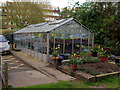 TQ1777 : Greenhouse, Brentford Dock by Andrew Curtis