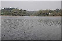 SW6425 : Loe Pool by Philip Halling