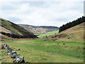 NT3342 : Valley of Glentress Water by Trevor Littlewood