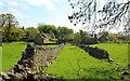 NO4103 : Ruins of farm buildings by Bill Kasman