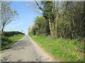 TF9840 : North  from  Binham  unnamed  road by Martin Dawes