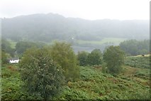 NY3404 : Loughrigg in the mist and rain by DS Pugh
