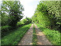 SO9072 : Track to Chaddesley Wood from the A448 by Jeff Gogarty