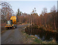 NH4939 : Pond by the track, Boblainy Forest by Craig Wallace