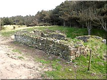 NT4884 : Ruins of St Patrick's Chapel near Jamie's Neuk by Oliver Dixon
