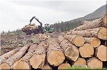 J3629 : John Deere forestry plant at work in Donard Wood by Eric Jones