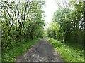 SK4775 : Slaley Hill by Graham Hogg