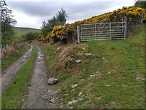 SJ0134 : Junction of the farm track and the bridleway by David Medcalf