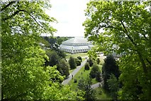 TQ1876 : Temperate House from Treetop Walkway by DS Pugh