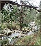 J3629 : The Glen River below Sonny's Bridge by Eric Jones