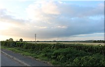 SP7146 : Field by Watling Street, Heathencote by David Howard