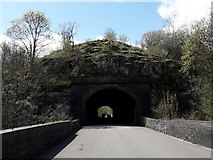 SK1273 : Chee Dale: Chee Tor №2 Tunnel by Chris Downer