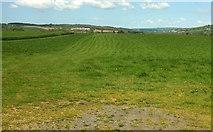 SS5726 : Farmland west of Chapelton by Derek Harper