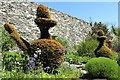 SH5573 : Topiary at Plas Cadnant by Richard Hoare