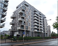 TQ3880 : Flats on Cotton Street (A1206) by JThomas