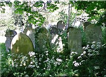 TG2408 : Graves in cow parsley by Evelyn Simak