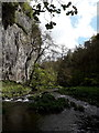 SK1273 : Chee Dale: the vertical face of Chee Tor by Chris Downer