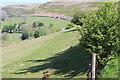 SO2206 : View towards Gwrhyd, Cwm Tyleri by M J Roscoe