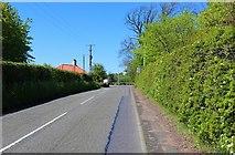 NT3195 : Main Street, West Wemyss by Bill Kasman