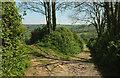 SX7248 : Green lane to the Avon valley #3 by Derek Harper