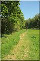 SX7248 : Footpath by the Avon by Derek Harper