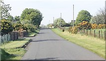 J0516 : View North along the southern section of Aghadavoyle Road by Eric Jones