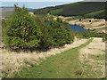 NN9702 : Glen Quey native woodland by wrobison