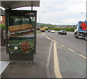 ST3090 : Vegan Your Way advert on a Malpas Road bus shelter, Newport by Jaggery