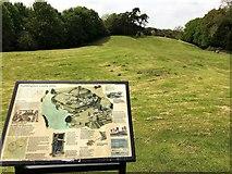 TL2471 : Huntingdon Castle Hills by Richard Humphrey