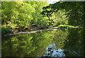 SX7249 : Weir on the Avon by Derek Harper