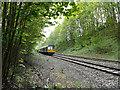 SE0026 : Pacer east of Carr Bridge by Stephen Craven