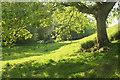 SX7348 : Footpath to Loddiswell by Derek Harper