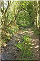 SX7248 : Footpath to the Avon by Derek Harper