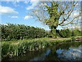 SP7389 : 3 miles from Foxton, on the Market Harborough arm by Christine Johnstone