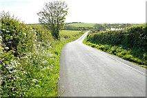 SH3286 : Lane near Llanfaethlu by Jeff Buck