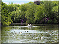 SD8303 : Rowing Boat on Heaton Park Lake by David Dixon