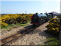 TR0817 : Dungeness on Easter Sunday by Marathon