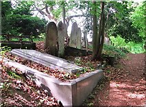 TG2408 : Path past the grave of Robert Haselwood by Evelyn Simak